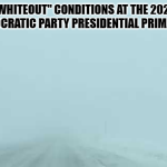 """Whiteout"" conditions at the 2020 Democratic Party presidential primaries"